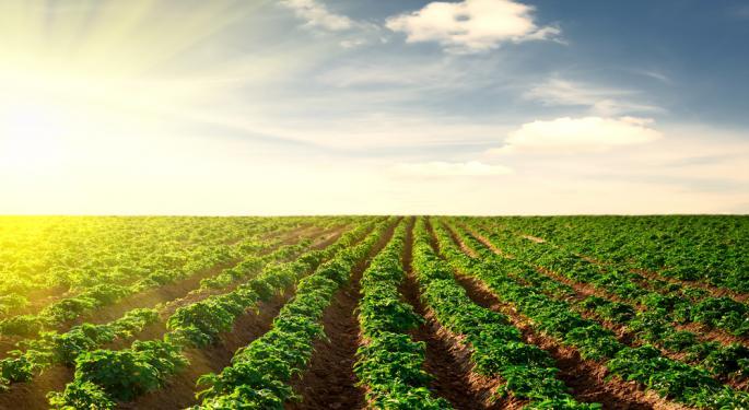 Stevia /Agriculture Stocks Alert