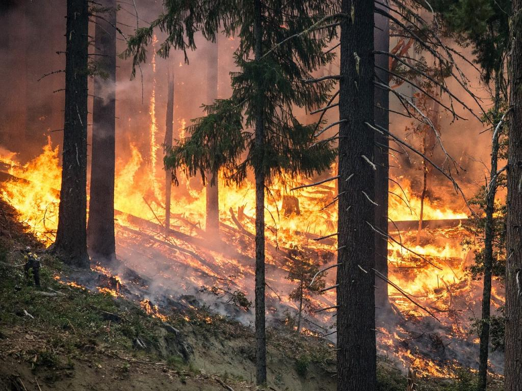 Where California's Wildfires Could Take PG&E Stock from Here