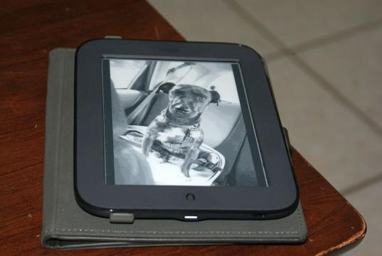 Barnes & Noble Backed Off Tablet Production