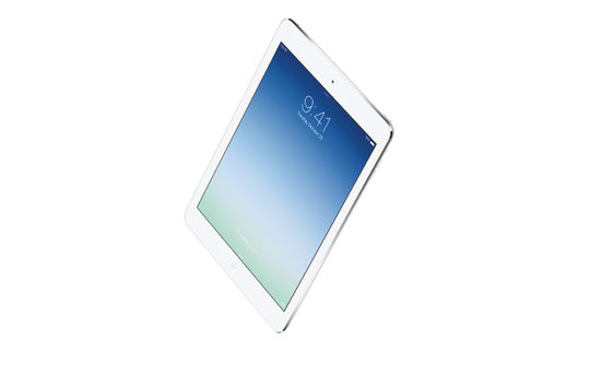 iPad On Track To Sell 20M Units